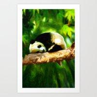 Baby Panda Resting - Painting Style Art Print