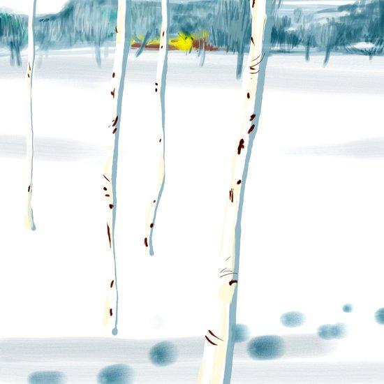 Betulle nella neve Canvas Print
