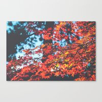 Lake Tahoe Leaves Canvas Print
