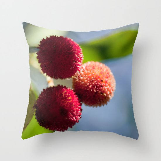Strawberry tree fruits 8697 Throw Pillow