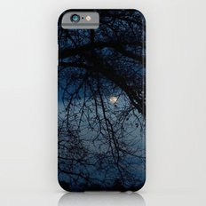 Through the Branches iPhone 6 Slim Case
