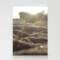 Myrtle Beach Stationery Cards
