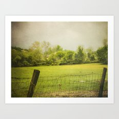 green green grass  Art Print
