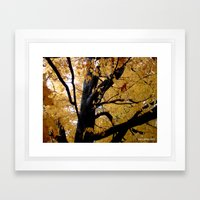 October branches Framed Art Print