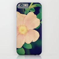 iPhone & iPod Case featuring Perfectly Pretty by RDelean