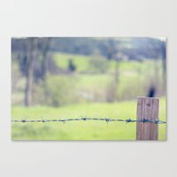 In The Country Canvas Print