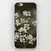 little white flowers. iPhone & iPod Skin