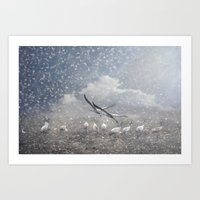 The Cranes Of Fischland Art Print