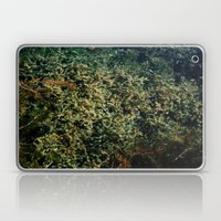 pond garden Laptop & iPad Skin