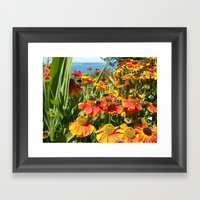 Sweet As A Bee And Daisi… Framed Art Print