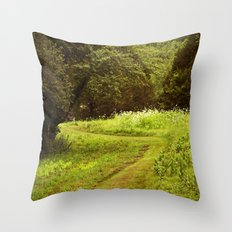 A Summers Trail Throw Pillow