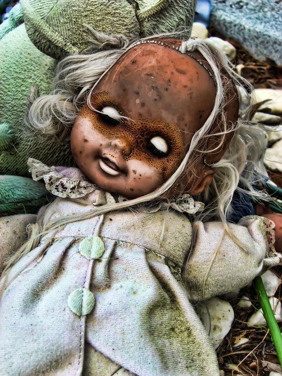 Doll Plague  Canvas Print
