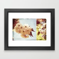 Cherry Blossom Dreaming Framed Art Print