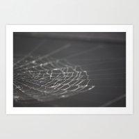 Spider Web Art Print