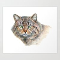 Street Cat portrait CC1402 Art Print