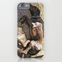 Sleepy Alaska iPhone 6 Slim Case