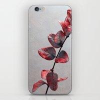 Red Leafs iPhone & iPod Skin