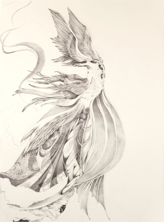 Fin and Feather Gown Art Print