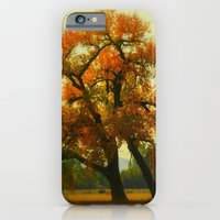 iPhone & iPod Case featuring Country Cottonwood by Jennifer L. Craft
