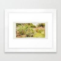 A Summer Garden. Framed Art Print