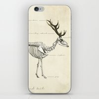 Death of the Red Tail iPhone & iPod Skin