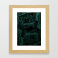 Dark Nature  Framed Art Print