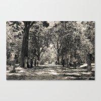 Angkor Vat Path Canvas Print
