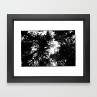 NORWEGIAN FOREST II Framed Art Print