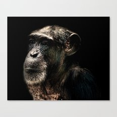 The Wise Canvas Print