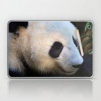Panda Nap Laptop & iPad Skin