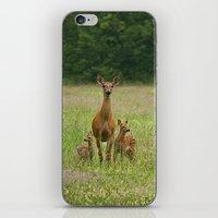 Doe with Twin Fawns iPhone & iPod Skin