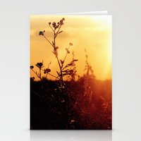 Illume Stationery Cards