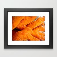 Dying Coral Framed Art Print