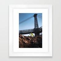 A Tree Grows In Brooklyn Framed Art Print