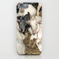 Sea Of White iPhone 6 Slim Case