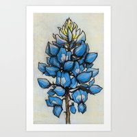 TEXAS BLUEBONNET  Art Print