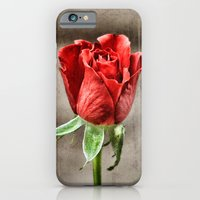 iPhone & iPod Case featuring Red Rose Red by J Coe Photography