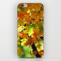 in october iPhone & iPod Skin