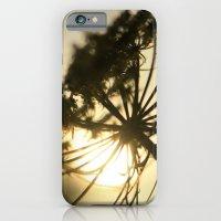 Lace Silhouette iPhone 6 Slim Case