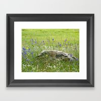 Jewels of Wyoming Framed Art Print