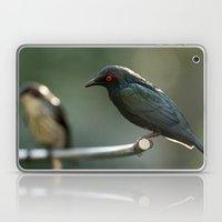 Starling Laptop & iPad Skin