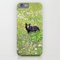 Pretty Bear iPhone 6 Slim Case