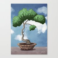 'Bonsai Choose Own Way G… Canvas Print