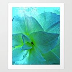 My Georgia O'Keefe Flower Art Print