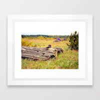 beach log Framed Art Print