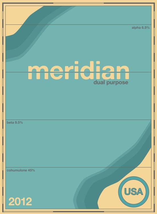 meridian single hop Art Print