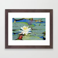 Magic Lily Framed Art Print