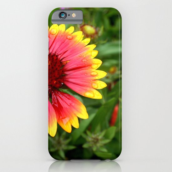 Summer Colours iPhone & iPod Case