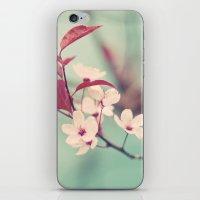 Dream in mint iPhone & iPod Skin