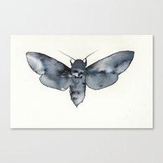 MOTH. Canvas Print